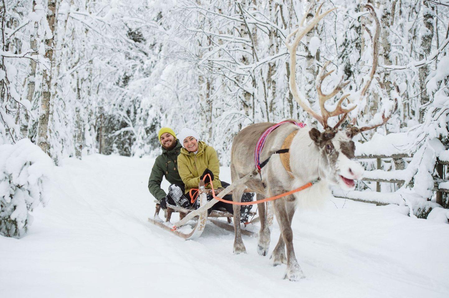 Traîneau à rennes, Laponie, Finlande